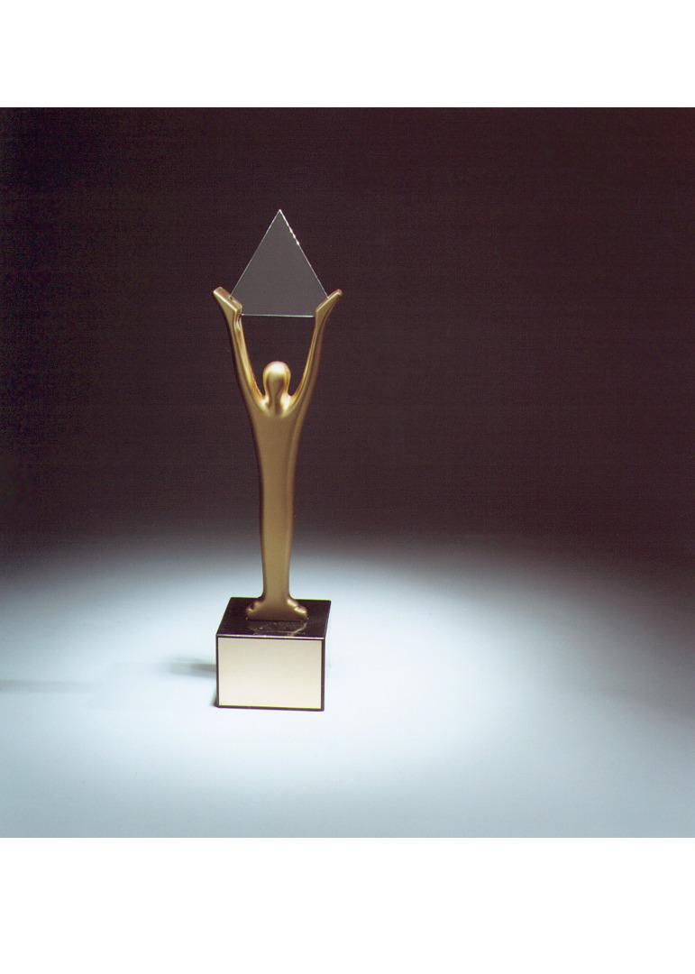 Lay's Altın Stevie ödülünü kazandı