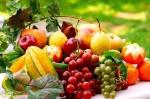 TÜİK: Bitkisel üretimde artış yaşanacak