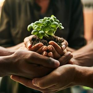 Sektör paydaşları gıda sistemini yapılandırmak için toplanıyor