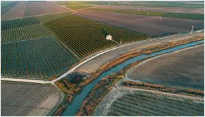 Tarımda Verimlilik ve Arazi Toplulaştırması  1