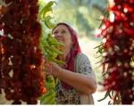 Unilever Türkiye, sürdürülebilir kalkınmanın itici gücü olmak için vites yükseltiyor
