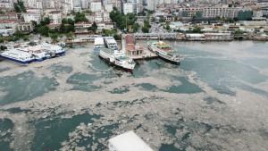 Deniz salyasından etkilenen balıkçılara yapılan nakdi destek iki katına çıkarıldı