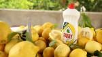 Fairy'den Çeşme Limonu'nu kurtarmak için büyük destek