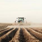 Tarımsal girdi fiyat endeksi Ağustos'ta arttı