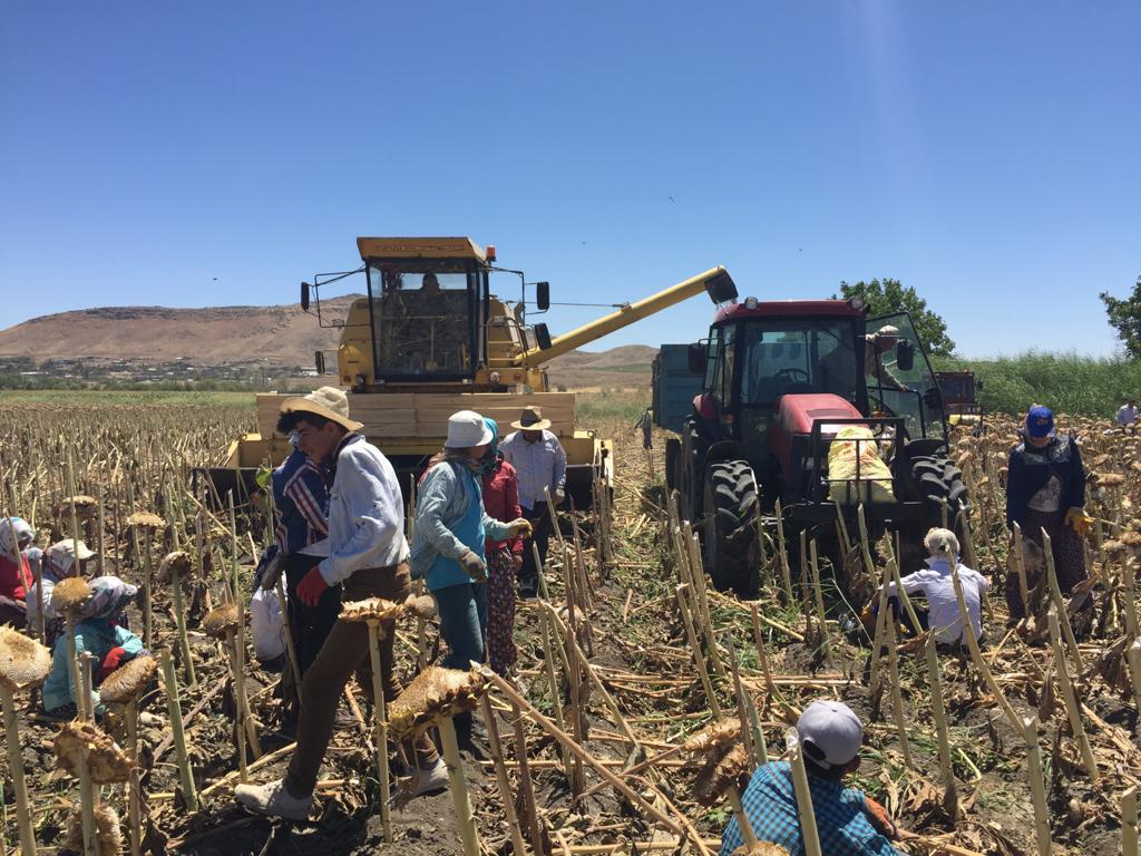 Tadım'dan çiftçiye sürdürülebilir üretim desteği